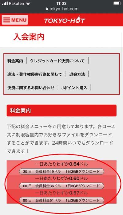 東京熱(TokyoHot)